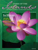 Times of the Islands Magazine - Mar-Apr-2009